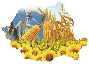 6-ianuarie-agricultura