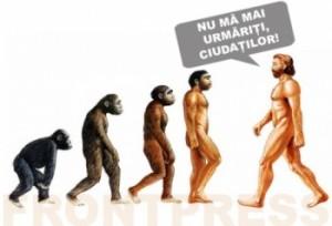 evolutie-350x238