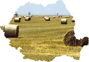 18_agricultura_evz_46