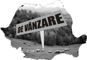 590-26_rom_de_vanzare