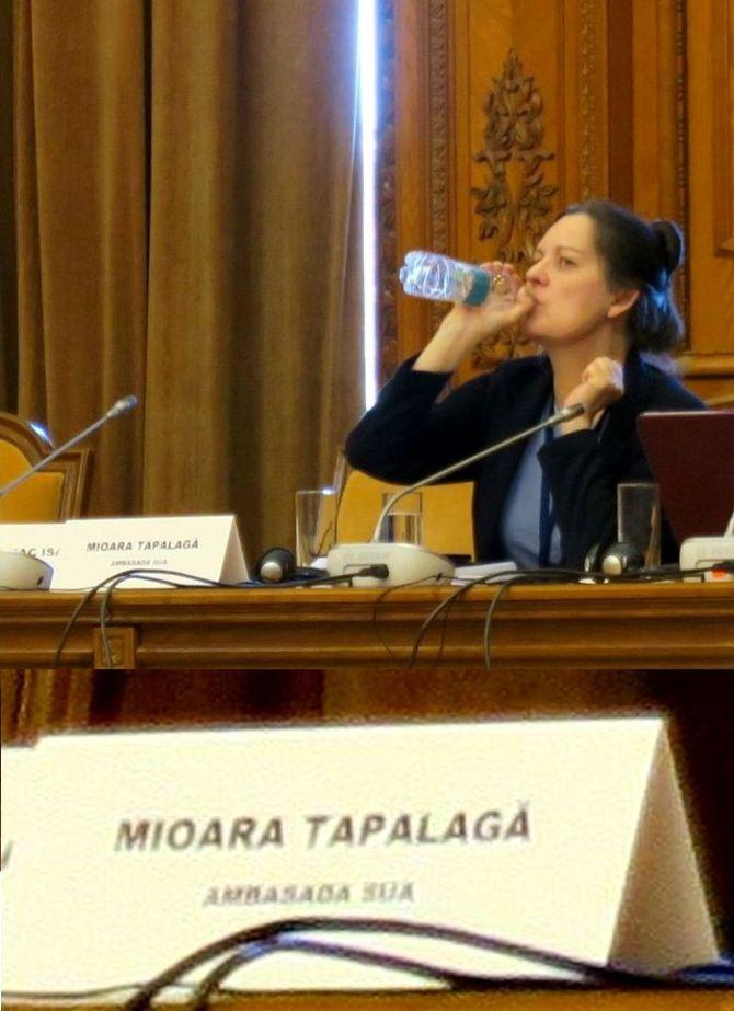 mioara_tapalaga